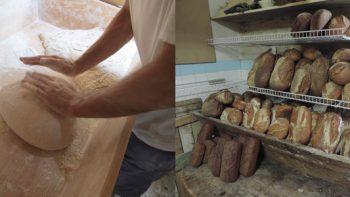 Permalien vers:Le fournil (Paysan-Boulanger)
